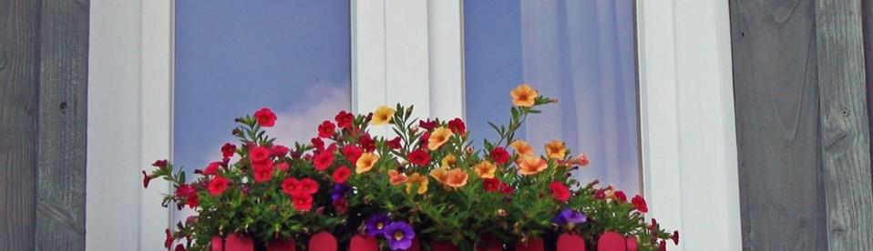 Raam met bloemen ervoor